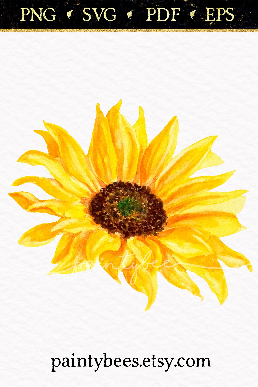 Sunflower Png Floral Clipart Sunflower Clipart Flower Svg