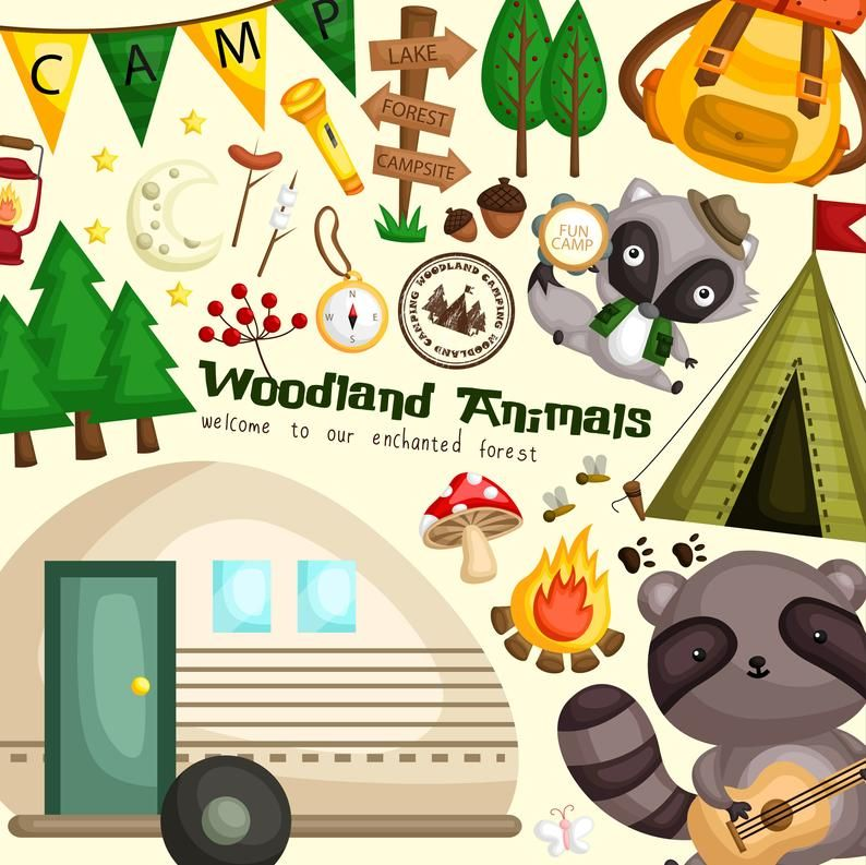Animal And Camping Clipart Cute Animal Forest And Camping Etsy In 2020 Camping Clipart Clip Art Cute Animal Clipart