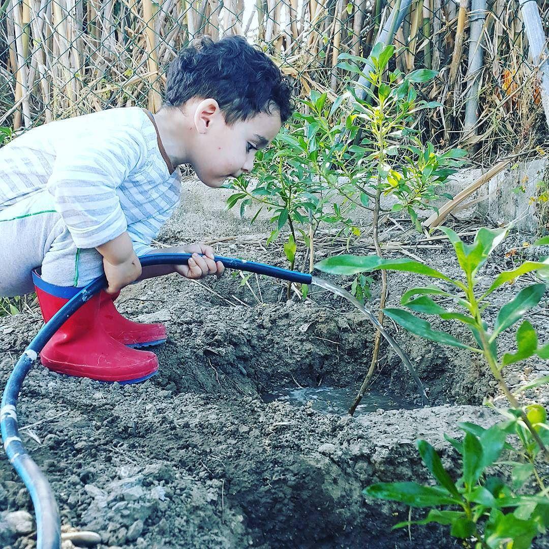 Can oglum bahce kenari icin ektigimiz fideleri elleriyle suluyor... bahceyi topragi yesili seviyoruz. Dilerim ki Bu fidelerde bizim sevgimizi anlarlar ve bizimle beraber buyurler. #nature #littlehands #garden #gardening #green #myhero #blessed #thankful #kirlenmekgüzeldir #kirlenmekguzeldir #life #lifewithangel #nurayakosman