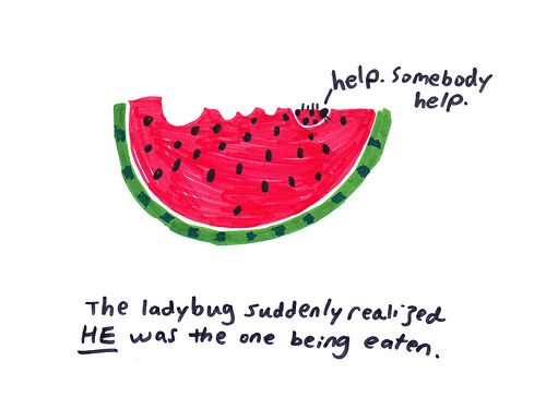 Ladybug And Watermelon Therapy Website Ladybug Watermelon