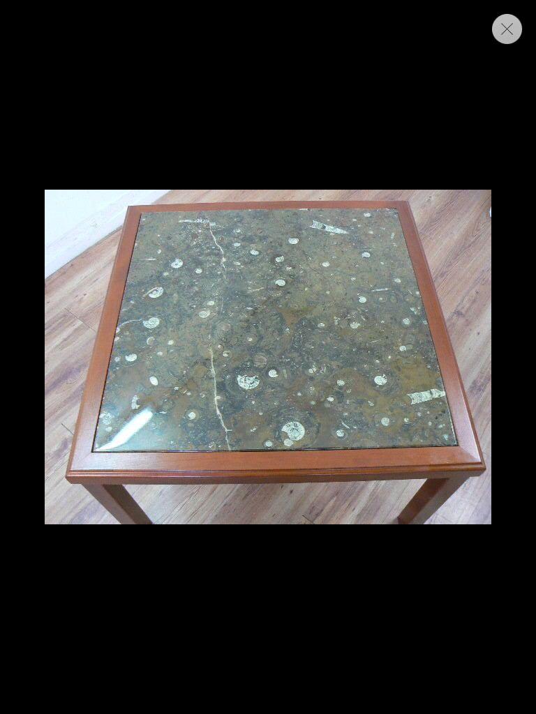 Fossilien Tisch