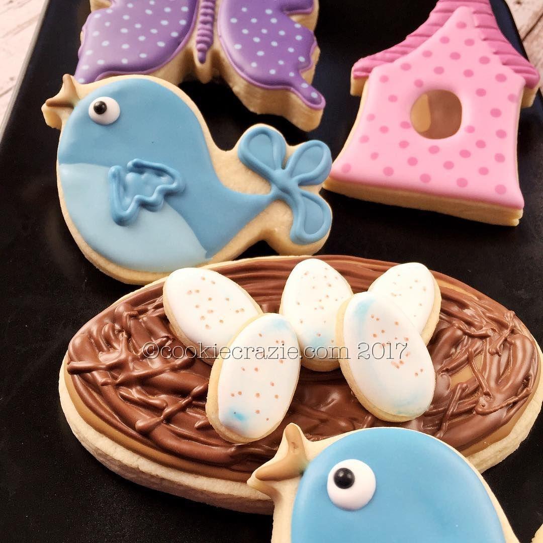 bird nest egg Spring cookies, Easter cooking, Sugar cookie