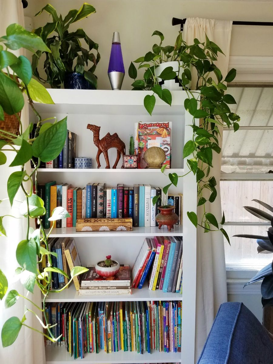 How To Create A Cozy Reading Space Sponsored The Boho Abode Bookcase Decor Eclectic Bookcases Living Room Bookcase