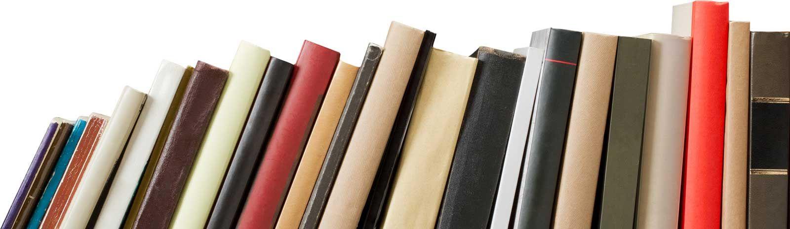 The help novel essay questions