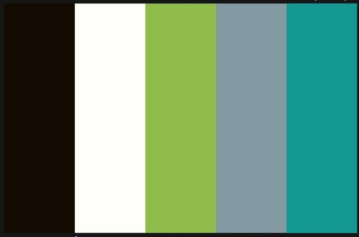 Color scheme black white grey teal lime green - Bathroom color schemes brown and teal ...