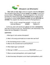 Chloroplasts and Mitochondria Worksheet Worksheets