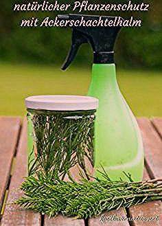 Natürliche Pflanzenschutzmittel mit Ackerschachtelhalm einfach selber ansetzen