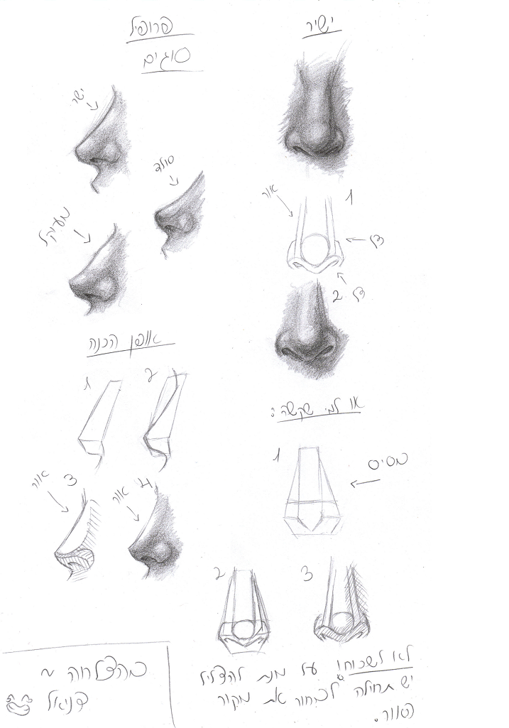 Human Nose Tutorial By Wannasleep On Deviantart Nose Drawing Drawings Realistic Eye Drawing