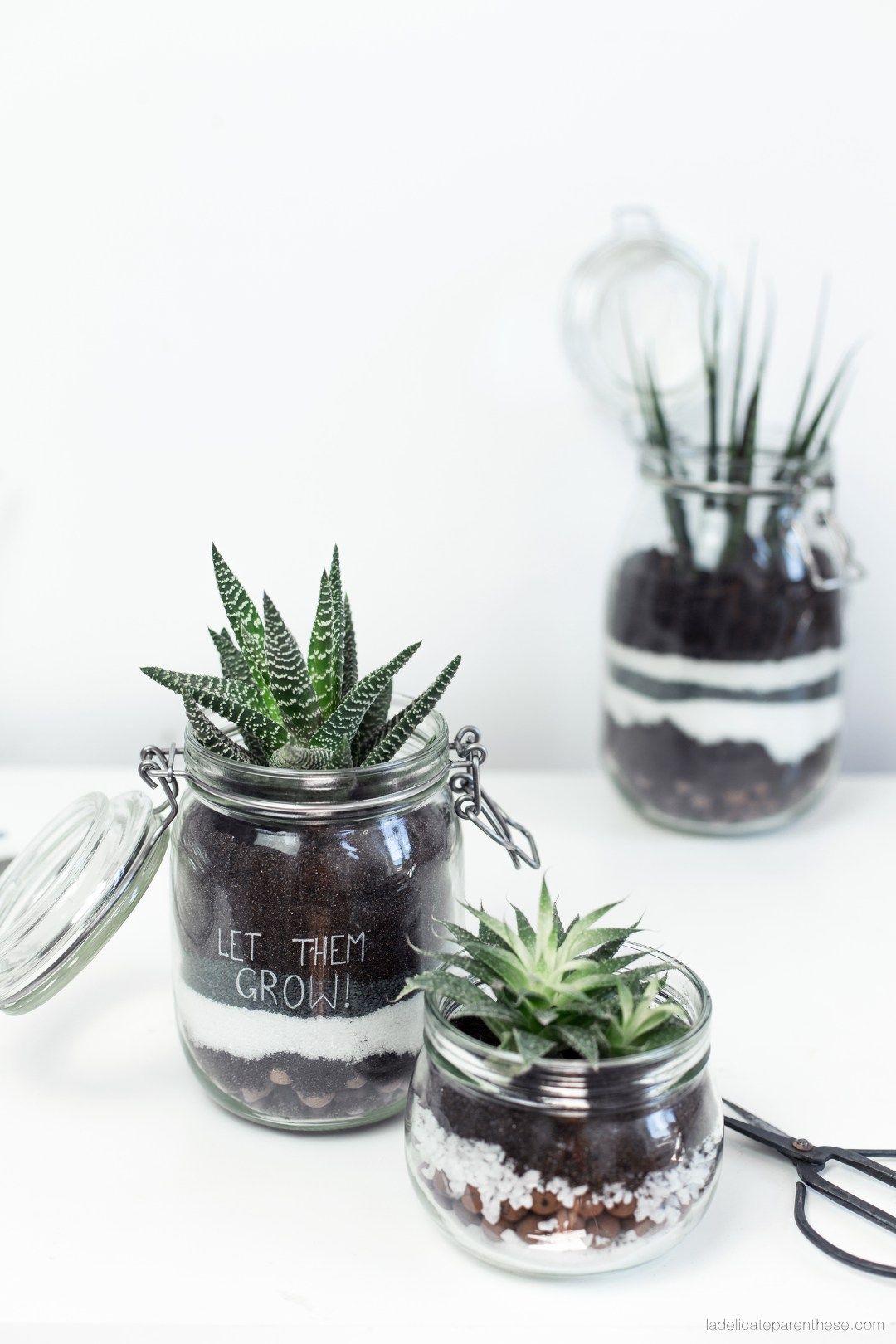 diy d tourner des bocaux en terrariums green. Black Bedroom Furniture Sets. Home Design Ideas