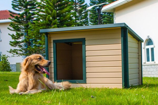 Eco Concepts Extra Large Insulated Dog House New Age