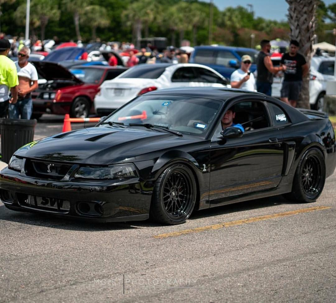 All Black Everything Owner Svt Reese Ford Mustang Cobra Mustang Cobra 2004 Ford Mustang