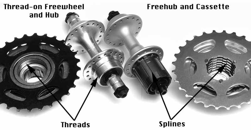 Freewheel Vs Cassette From The Great Sheldonbrown Com Bicycle