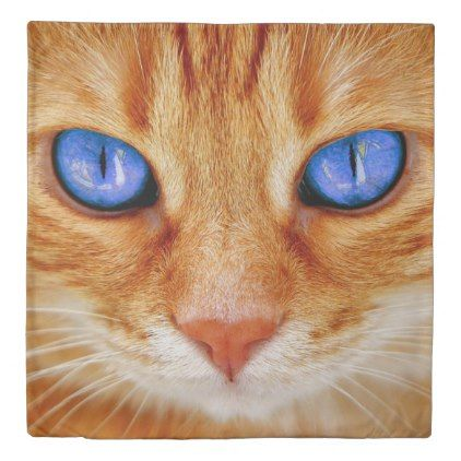 Ginger Cat With Blue Eyes Duvet Cover Zazzle Com In 2020 Cute Cat Breeds Tabby Cat Pictures Orange Tabby Cats