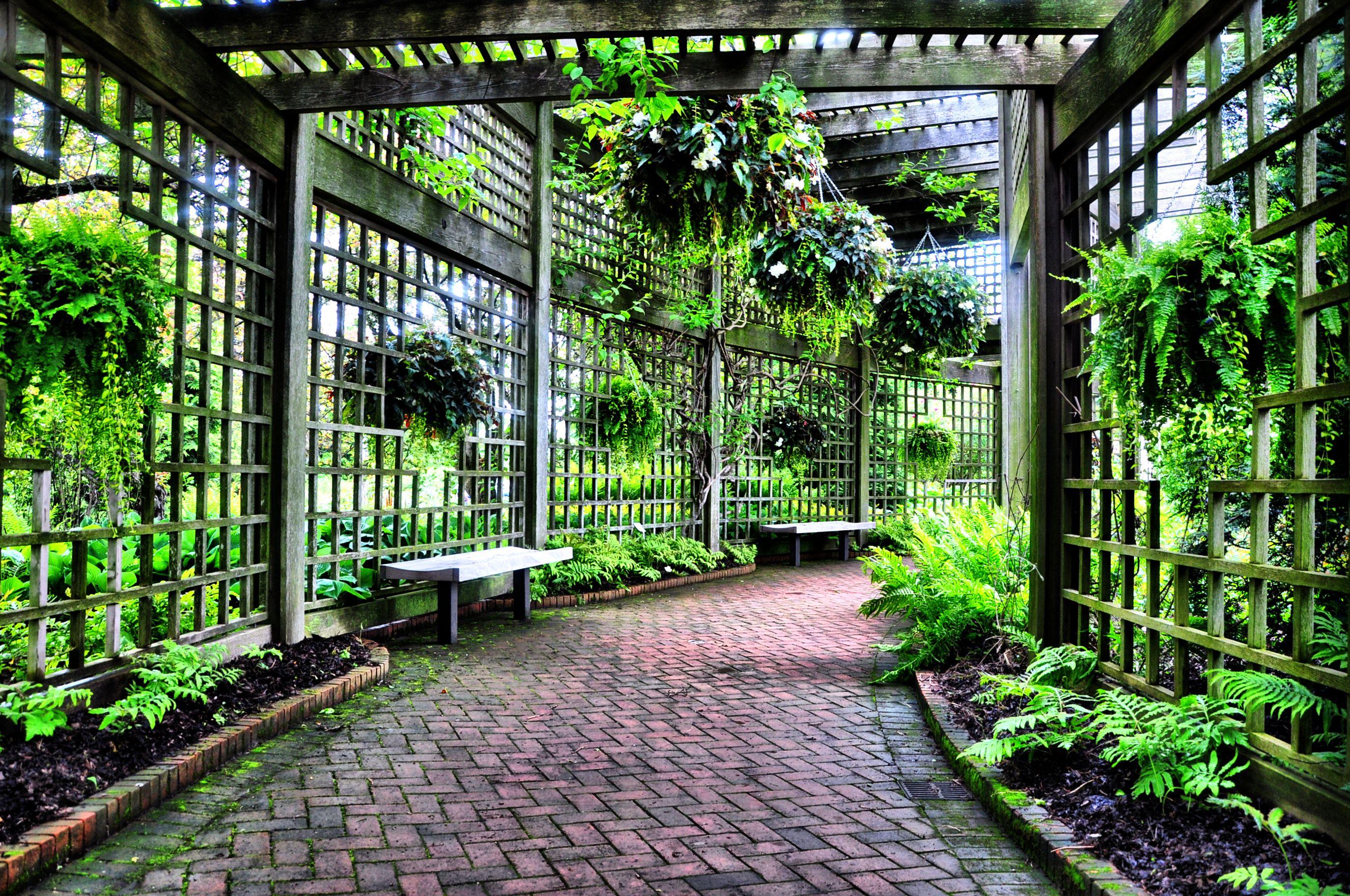 Large Garden Trellis (2748×1825)