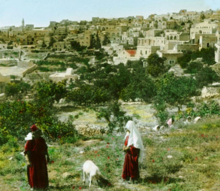 بيت لحم بيت لحم Bethlehem 1890s 7 73901 فلسطين في الذاكرة Palestine History Bethlehem City Bethlehem