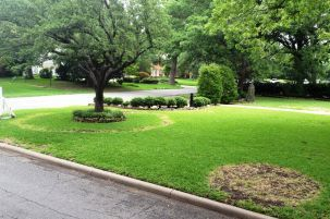 Our Work Organic Lawn Organic Lawn Care Lawn And Landscape