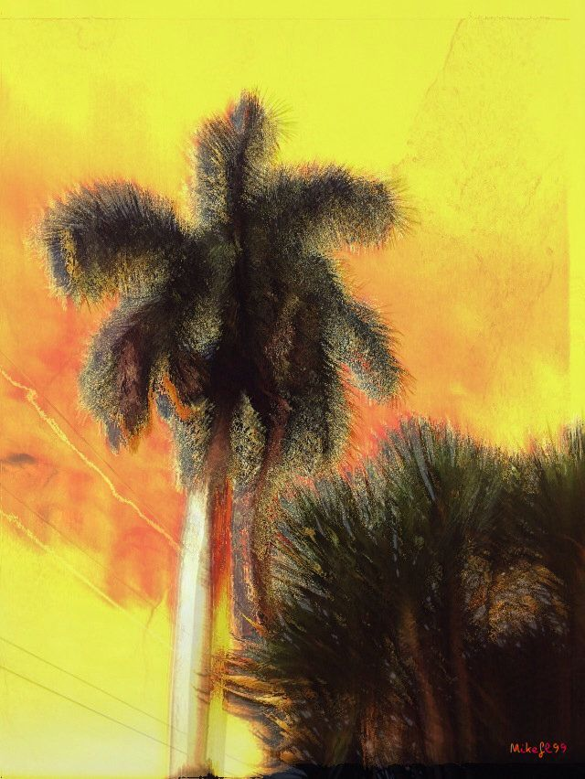 Palm trees. — #mikefl99 #modernart #art #captionthemoment #colorful #cool #creative #effects #nature #outdoors • mikefl99 on Streamzoo