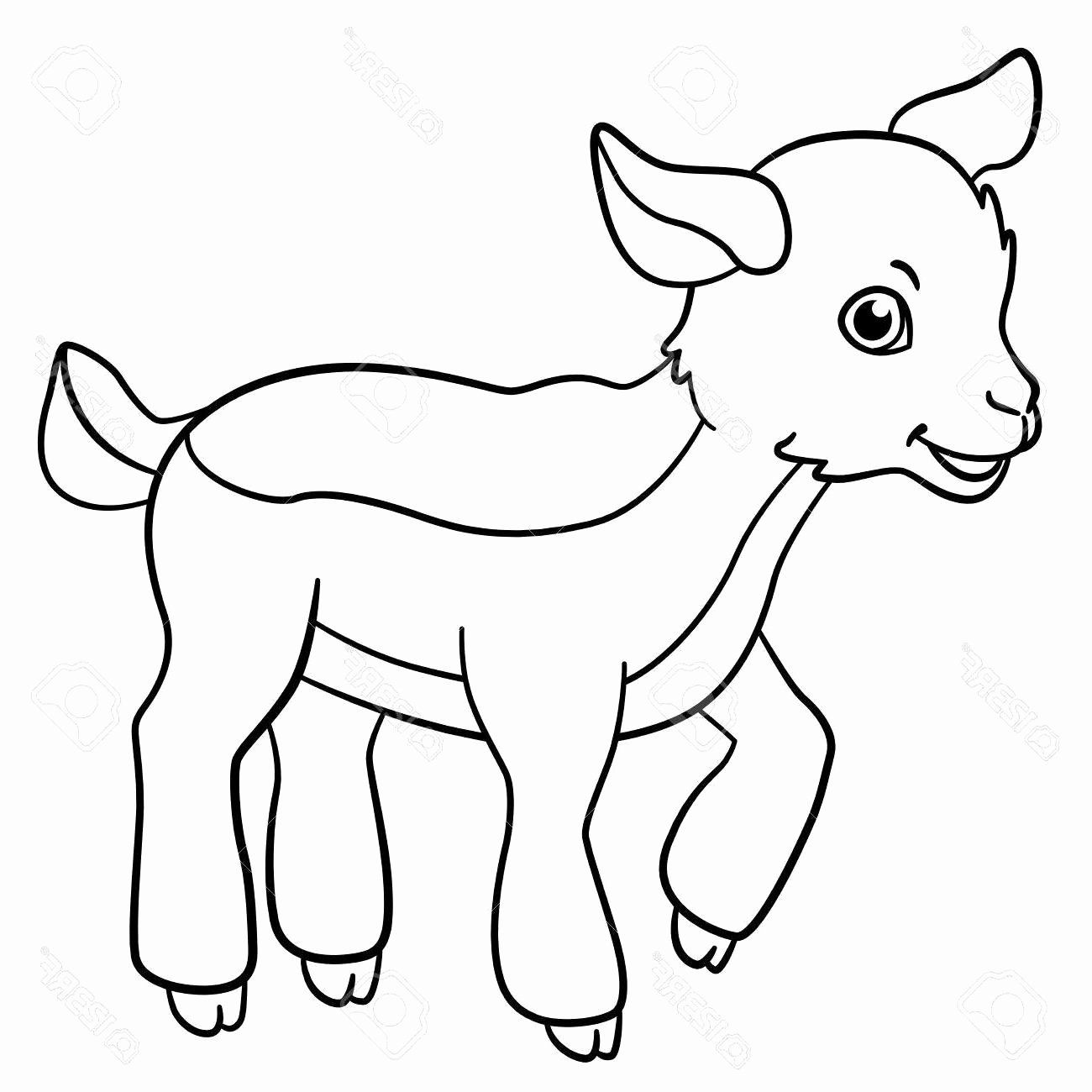 coloring pages nature animals best of