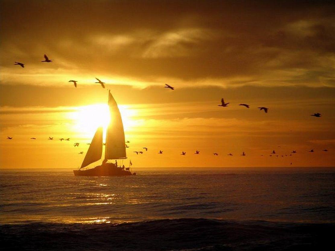 Sunset Beautiful Birds Sea Ship Sunset Winter Sailing Sunset Airplane View Wallpaper sunset sea boat sky coast