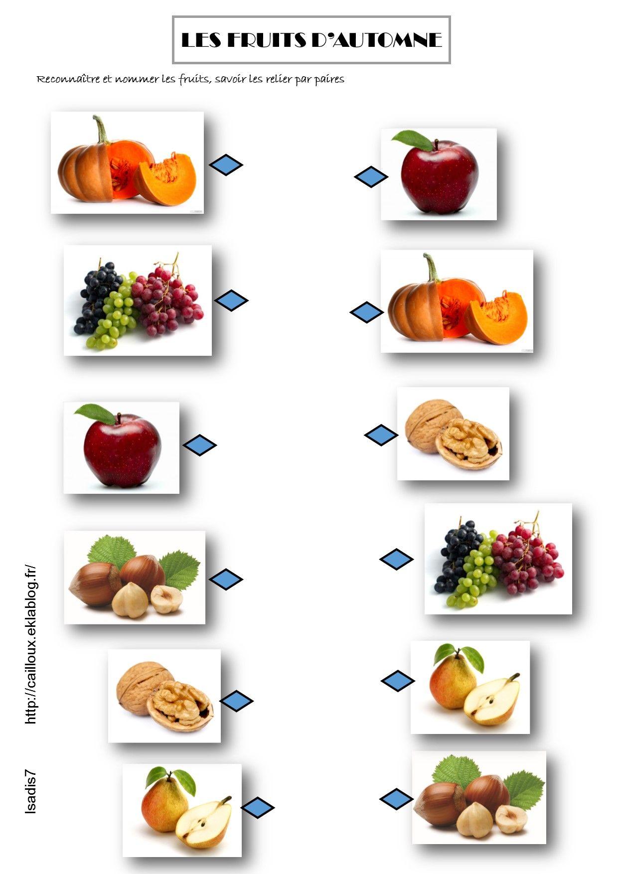 Les fruits d 39 automne sciences pinterest les fruits - Fruits automne maternelle ...