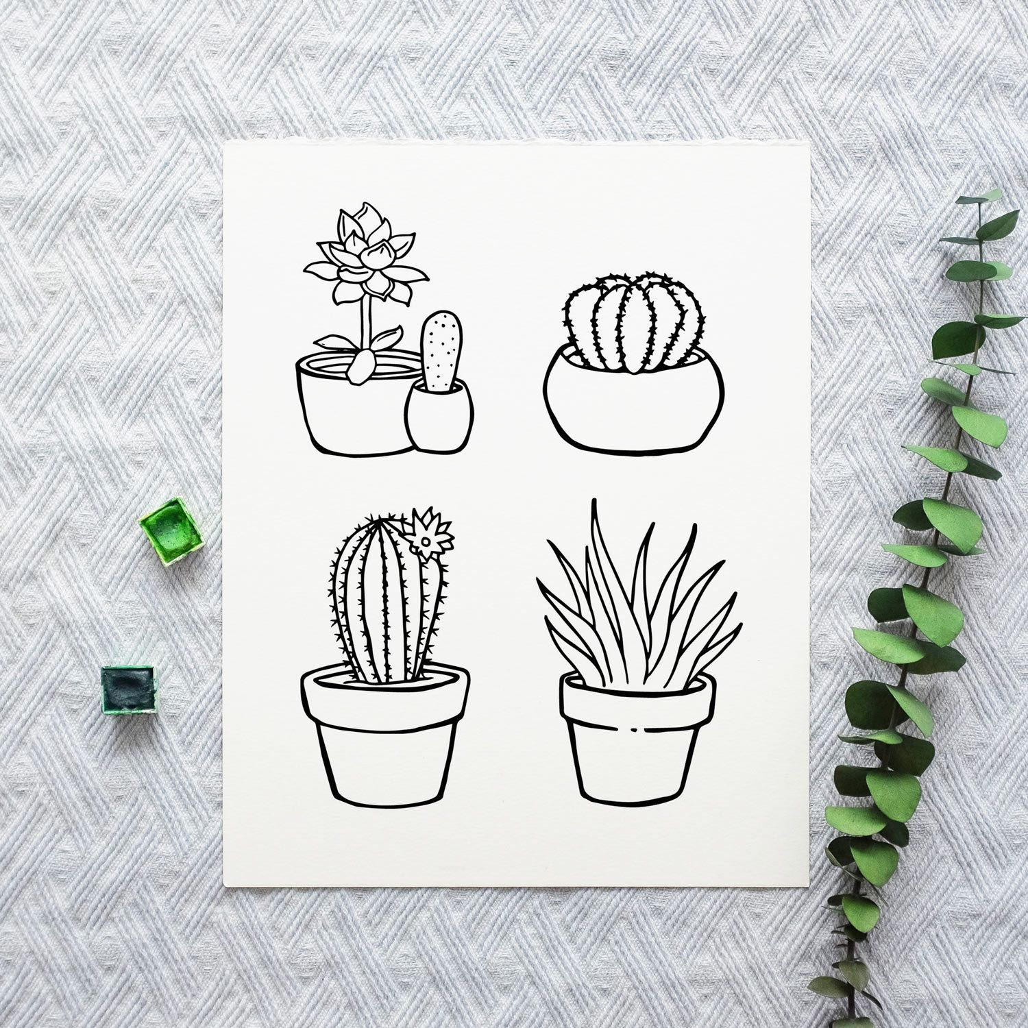 Succulents Coloring Pages Cactus Coloring Pages Part 2 Set Easy Drawings Coloring Pages Succulents Drawing