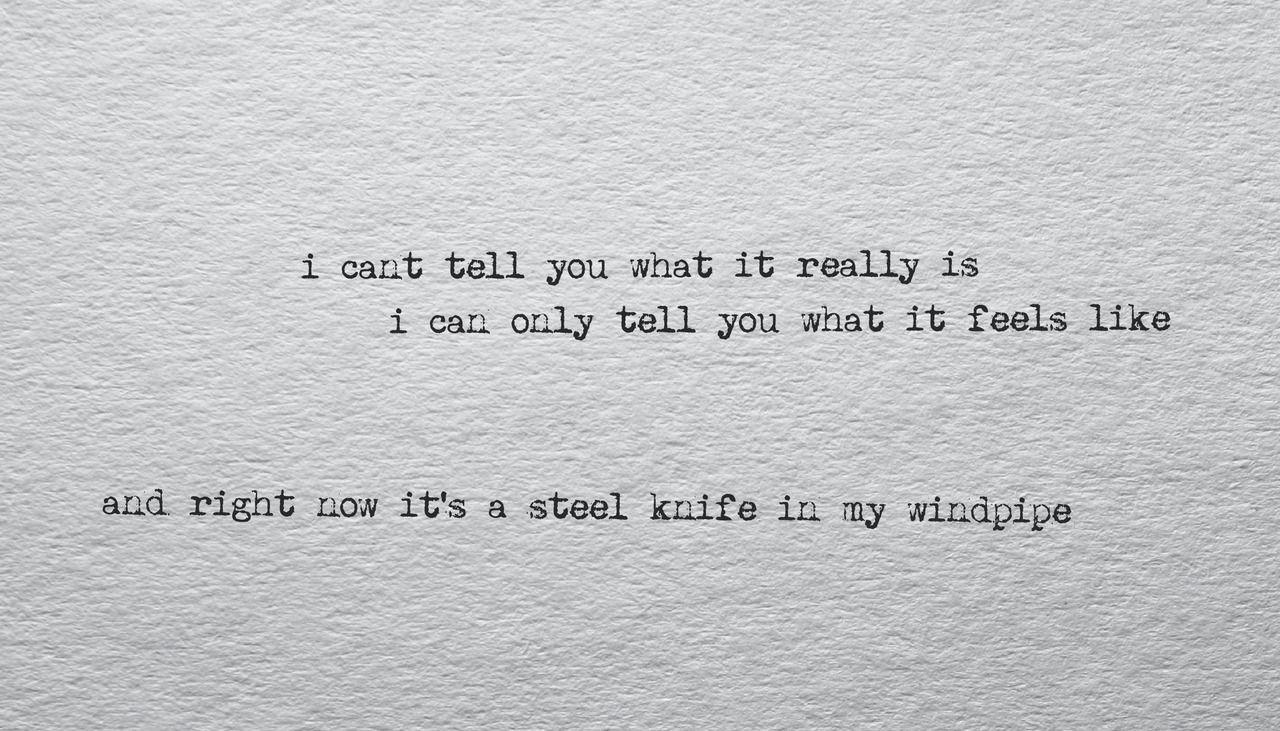 Eminem love the way you lie eminem quotes eminem