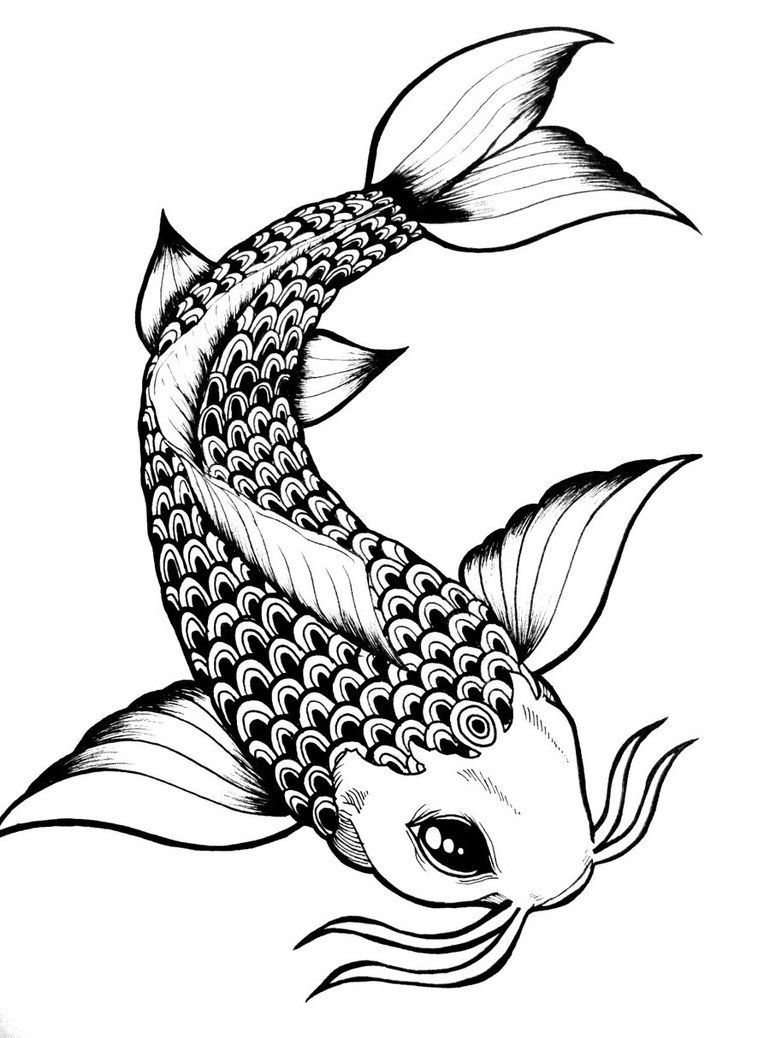 Simple koi outline simple koi fish drawings koi fish by for Black and white coy fish