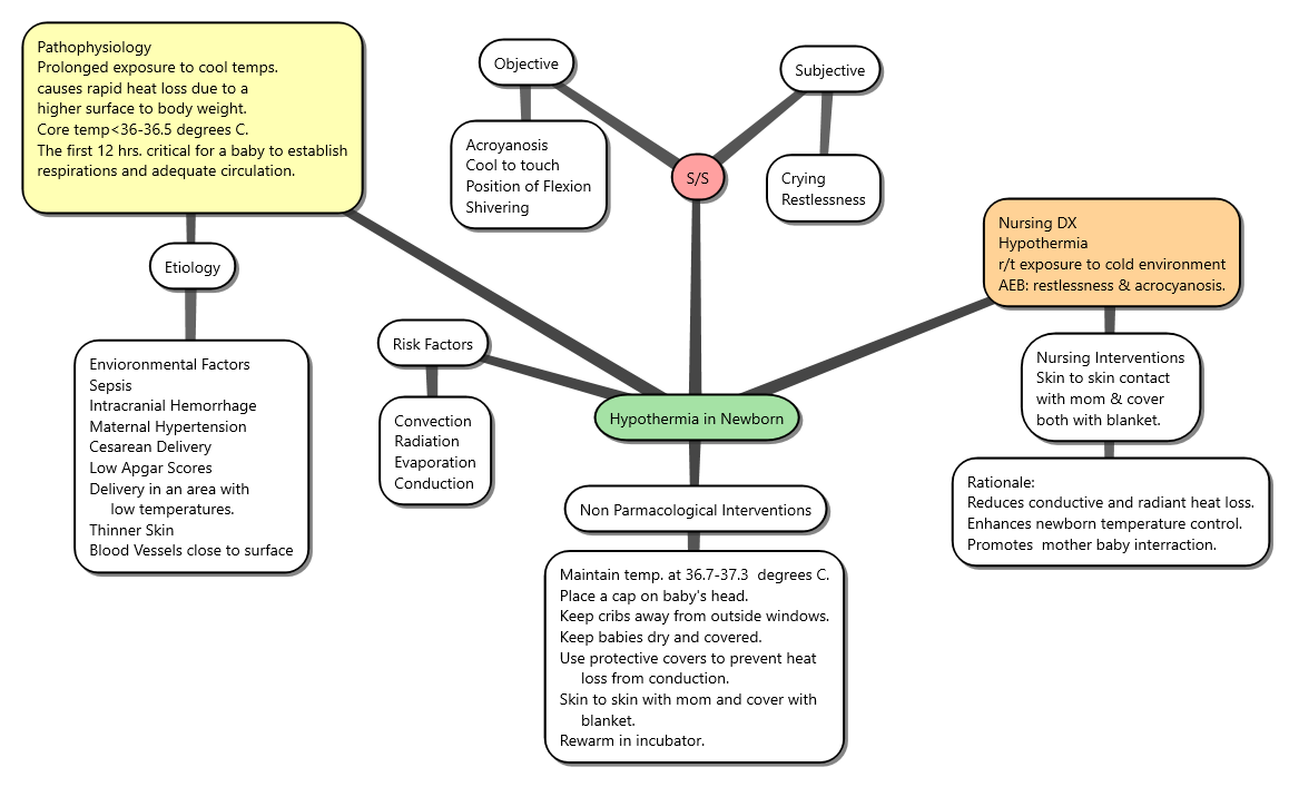 Breastfeeding Concept Map | .topsimages.com