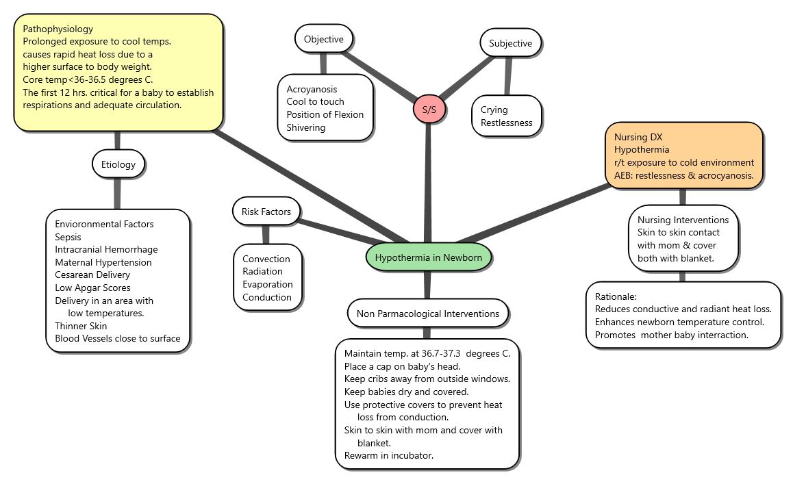 Postpartum Hemorrhage Concept Map.Hypothermia In Newborn Concept Map Nursing Concept Maps