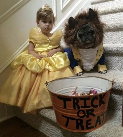 Cute Beauty And The Beast Costume Idea With Kid And Dog Cool