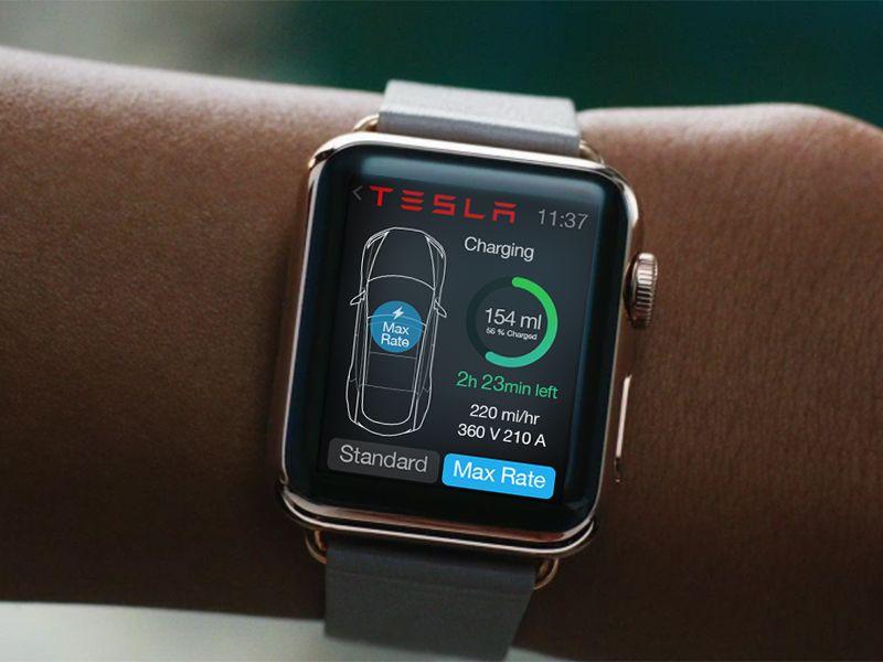 Tesla Watch App Concept Design