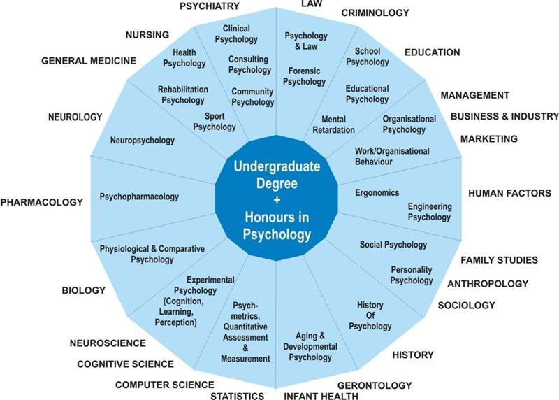 Undergraduate Degree Psychology  Knowing    Psychology