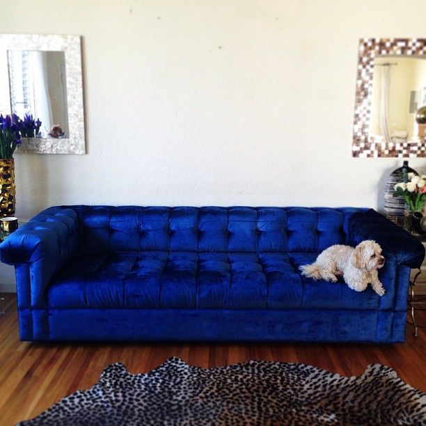 Explore Reupholster Couch Blue Couches And More
