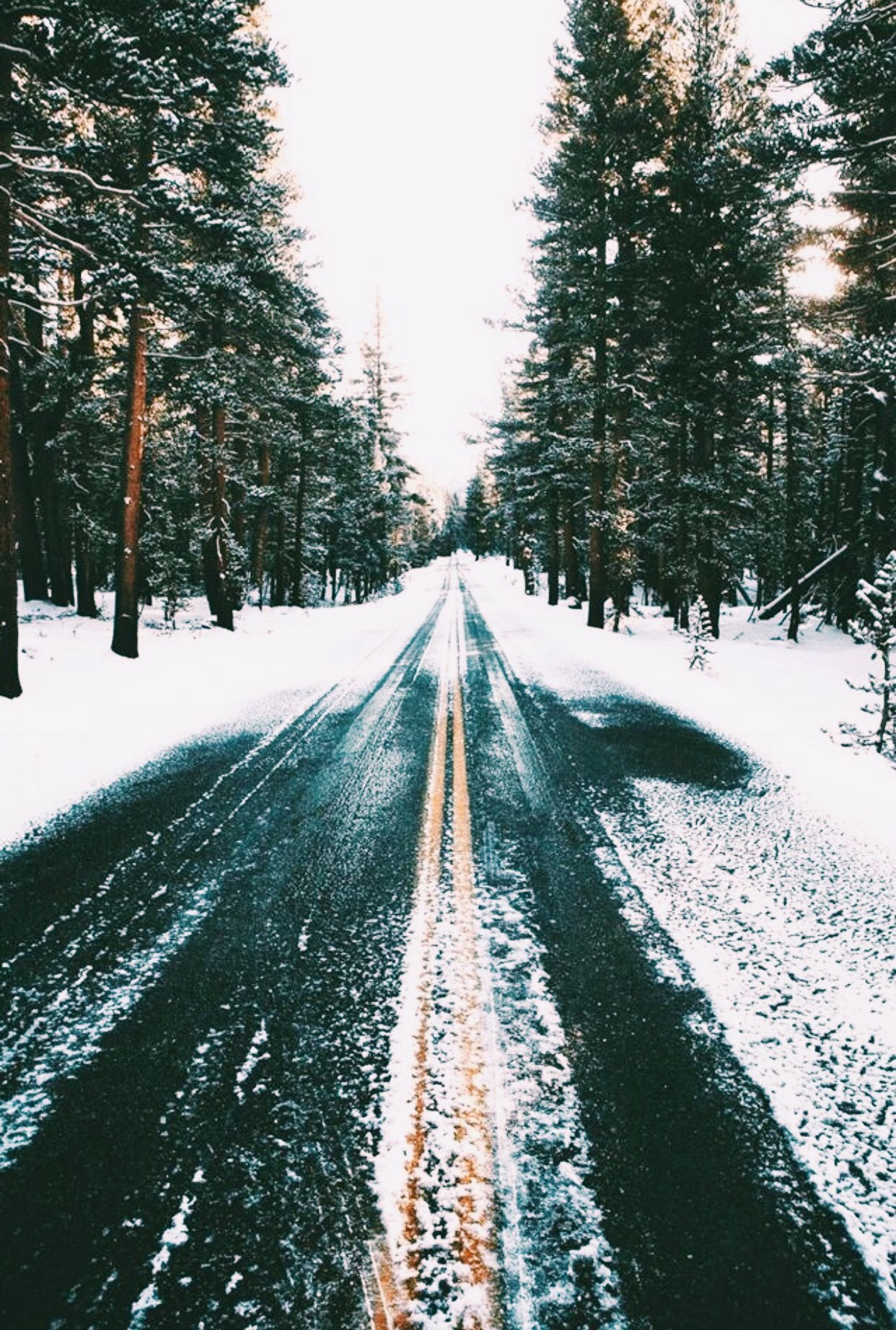 Oliviaagrayee Iphone Wallpaper Winter Winter Wallpaper