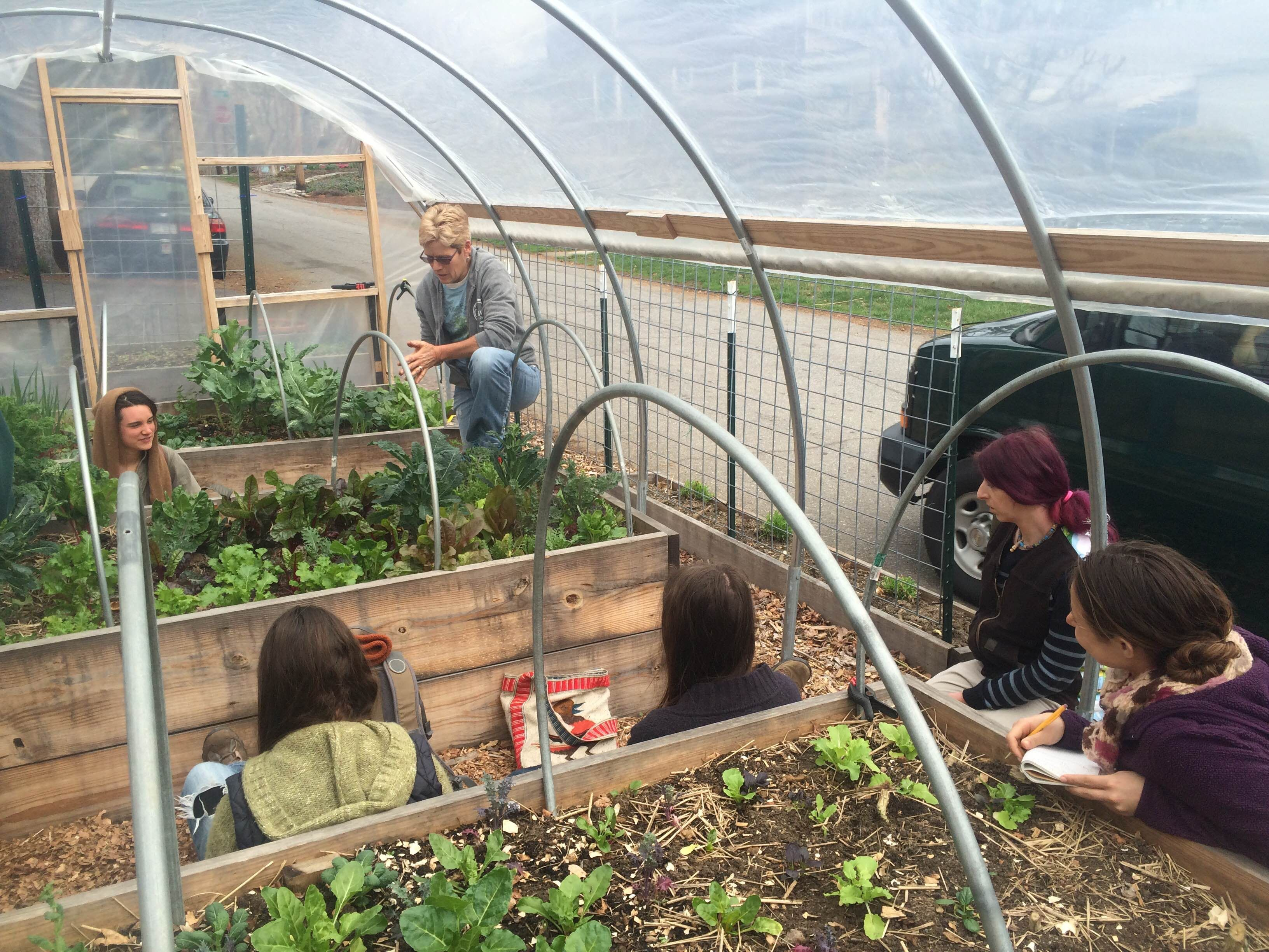 Garden Students Learning The Abcs Of Urban Greenhouse