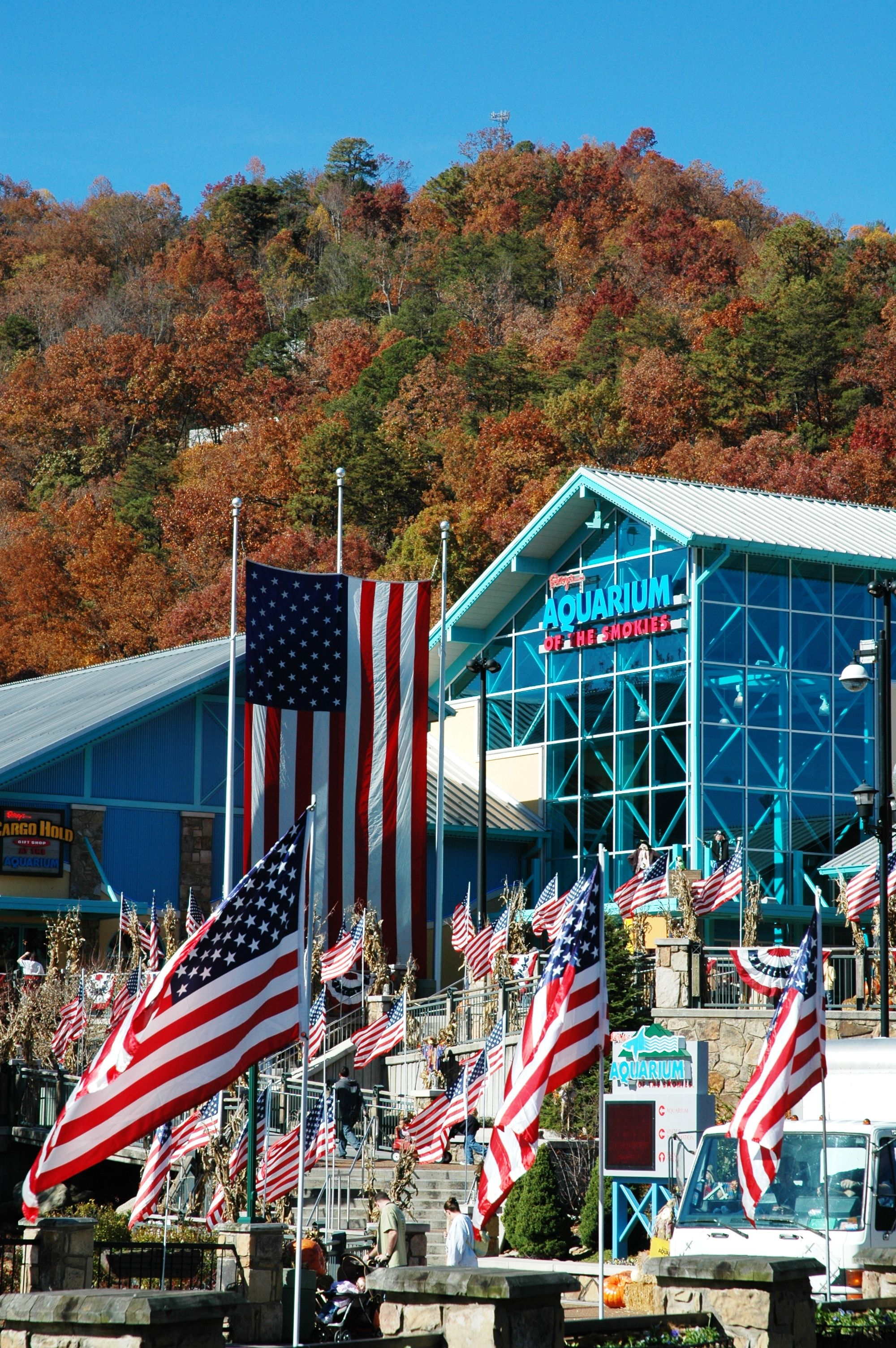 cabin gatlinburg located pool cabins inspired with in heavenly bedroom rentals