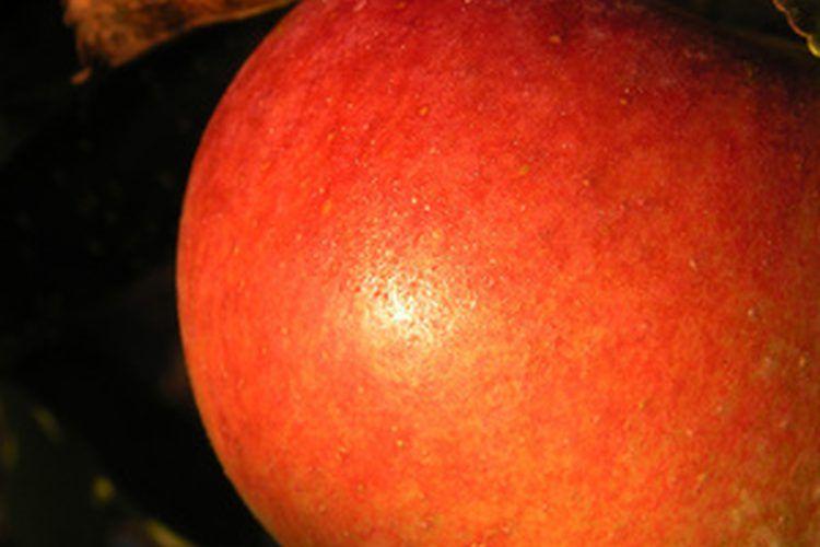 Alergias a las frutas y verduras crudas. Las alergias a las frutas y verduras crudas pueden causar síntomas graves que se deben tratar de inmediato. Sin embargo, este tipo de alergia, también conocida como síndrome de alergia oral, se puede prevenir con facilidad, ya que no puedes evitar el consumo ...