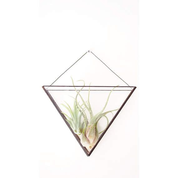 Geometric Gl Wall Terrarium Indoor Planter Modern