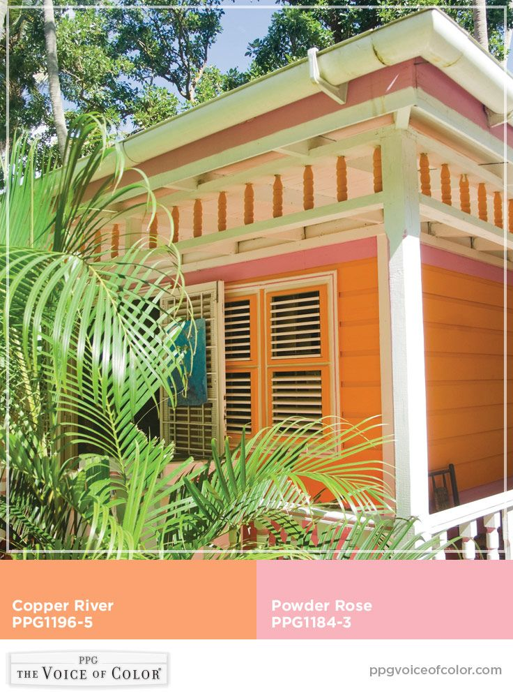 Tropical Colors For Home Interior: Copper River - PPG1196-5 In 2019