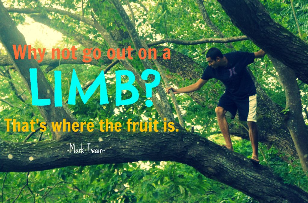 why not go out on a limb that's where the fruit is mark twain - Google Search