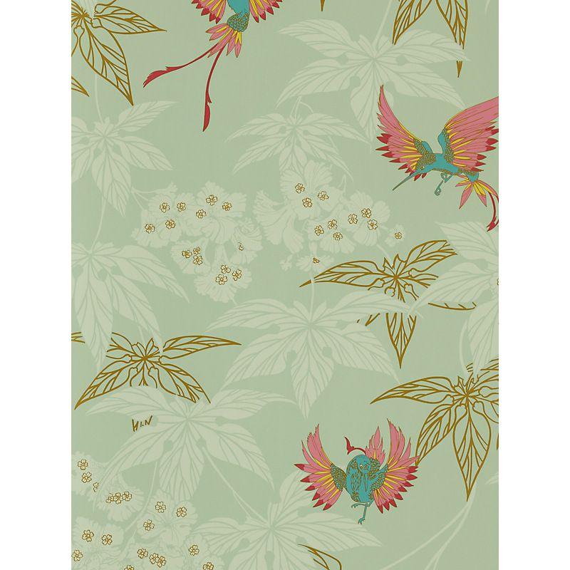 Buy Osborne Little Grove Garden Wallpaper Online At John Lewis Wallpaper Floral Wallpaper Hummingbird Wallpaper