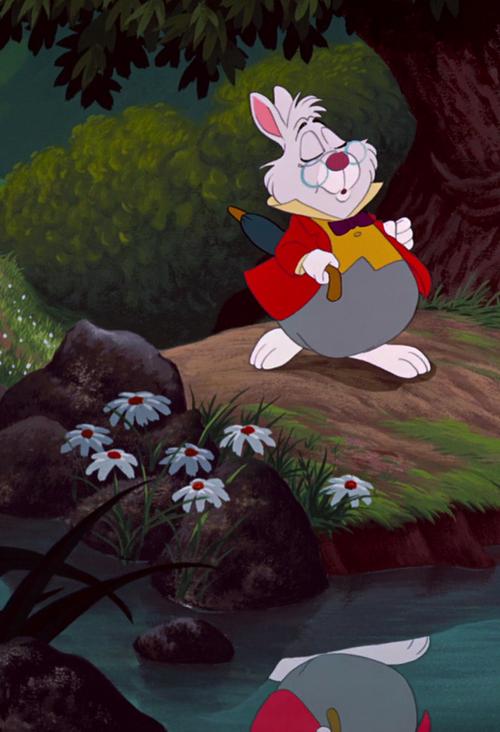 White Rabbit from Alice in Wonderland. | Alice in ...