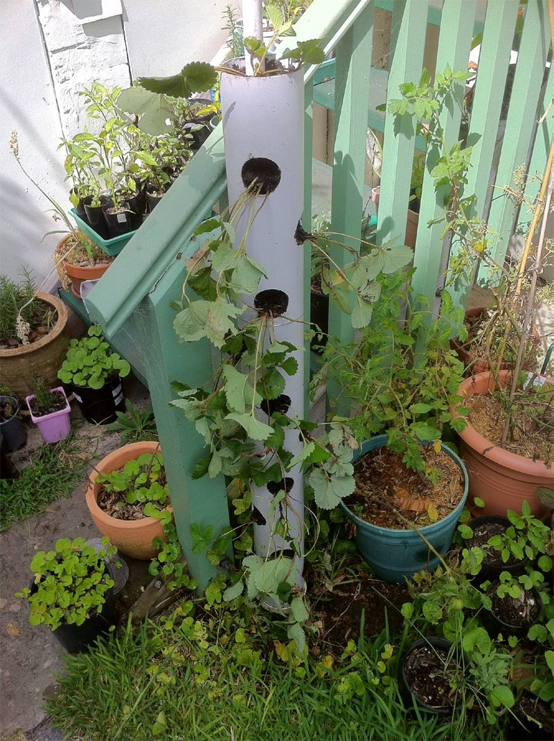 PVC Pipe Vertical Planter & 15 Creative PVC Pipe Projects For Your Yard and Garden | Pvc pipe ...