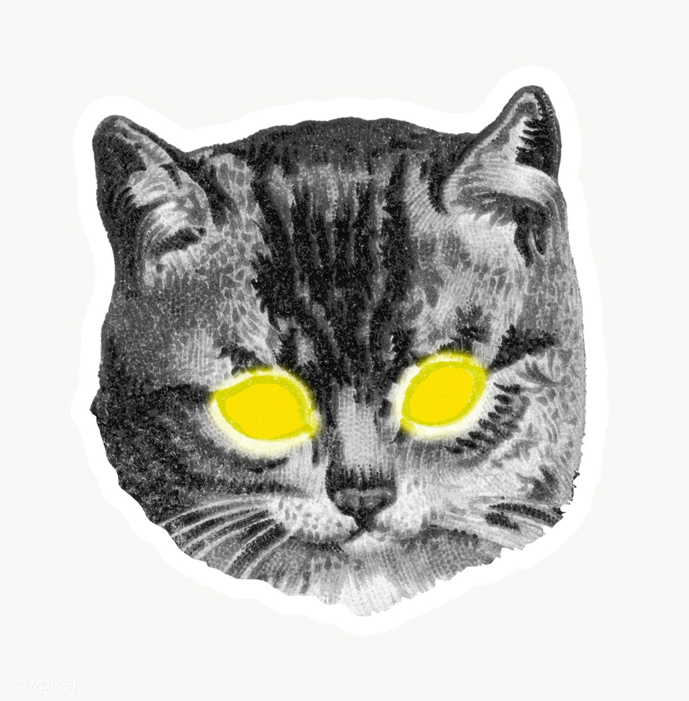 Cat With Yellow Laser Eyes Sticker Transparent Png Free Image By Rawpixel Com Eyeeyeview In 2020 Cat Furry Lion Illustration Animal Clipart