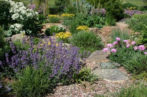 Springtime Splendor Ii Xeriscape Landscaping Low Water Gardening Xeriscape