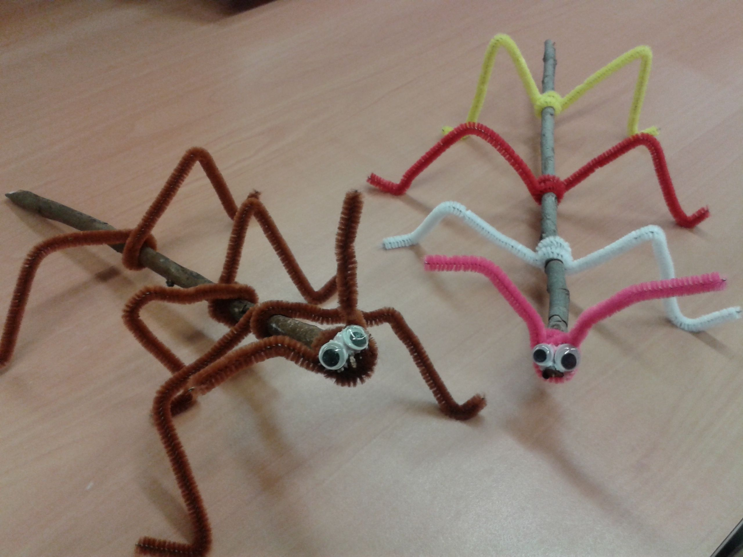 Make Stick Insect Science Craft