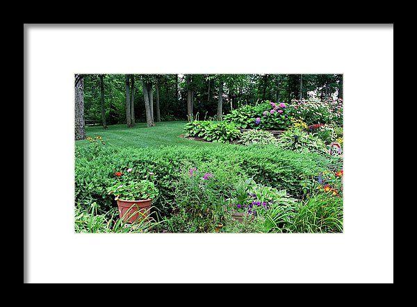 nature, garden, landscape, flowers, michiale schneider photography