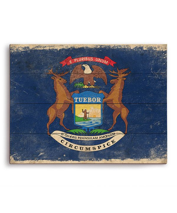 Look at this Michigan State Flag Wall Art on #zulily today!