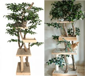 make a cat tree using real branches my amazing diy cat. Black Bedroom Furniture Sets. Home Design Ideas