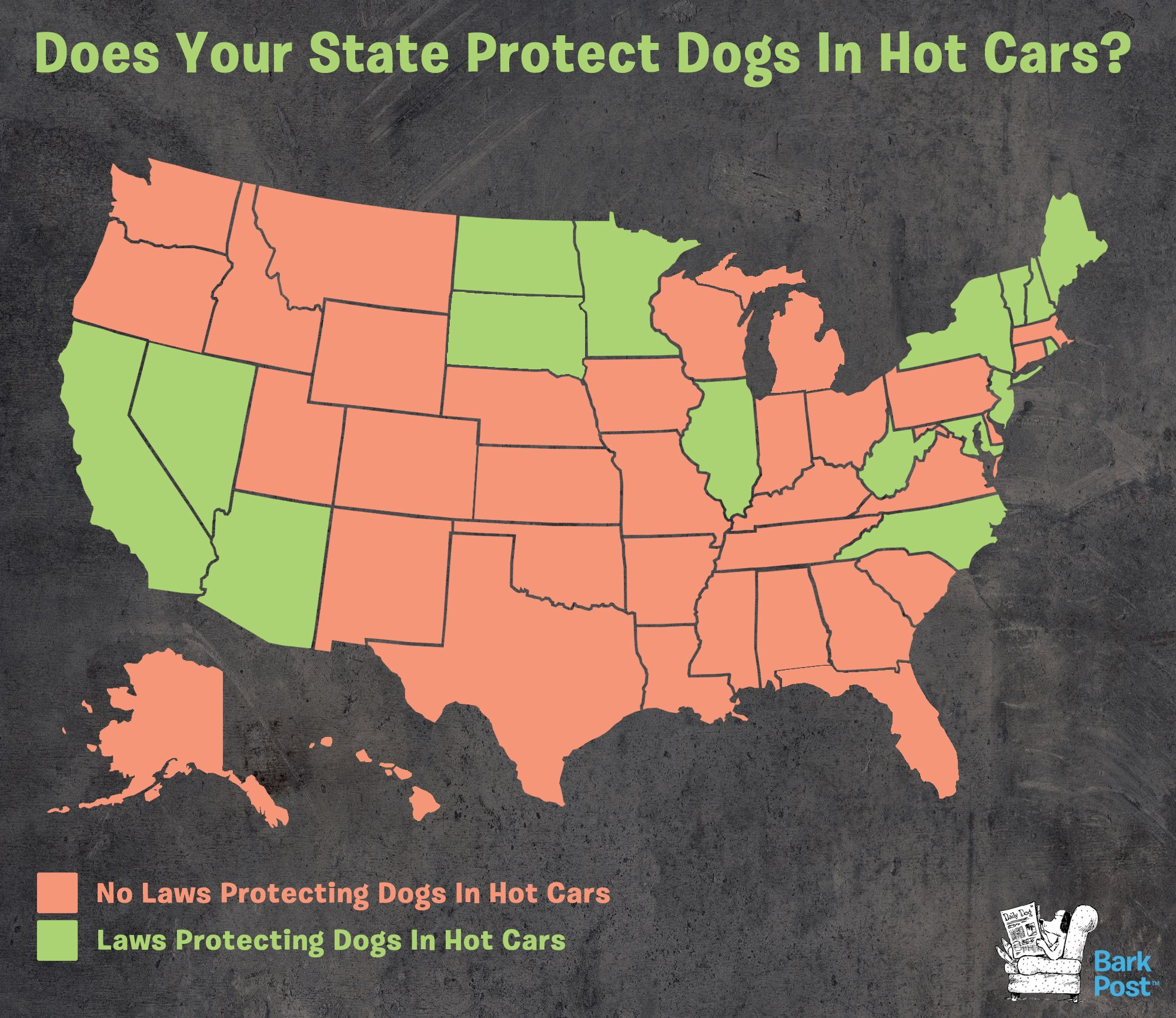 16 States With Laws To Protect Dogs In Hot Cars Hot Cars Dogs